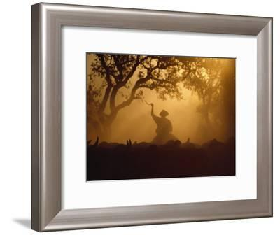 Cowboy and Cattle Silhouetted Against the Setting Sun-Joel Sartore-Framed Photographic Print