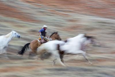 https://imgc.artprintimages.com/img/print/cowboy-at-full-gallop-in-motion_u-l-pzqv330.jpg?p=0