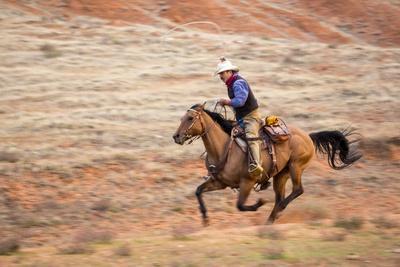 https://imgc.artprintimages.com/img/print/cowboy-at-full-gallop_u-l-pzqu7s0.jpg?p=0