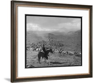 Cowboy Farmer in Argentina South America--Framed Giclee Print