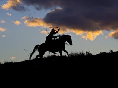 https://imgc.artprintimages.com/img/print/cowboy-in-silhouette-with-sunset_u-l-pzqum10.jpg?p=0
