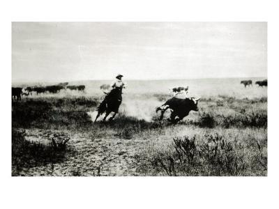 Cowboy on Horseback Lassooing a Calf-L^a^ Huffman-Giclee Print