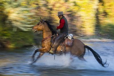 https://imgc.artprintimages.com/img/print/cowboy-riding-through-river-on-a-horse_u-l-pzpz1s0.jpg?p=0