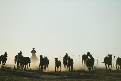 https://imgc.artprintimages.com/img/print/cowboy-rounding-up-horses_u-l-pzracy0.jpg?p=0