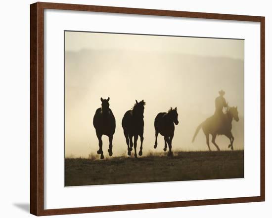 Cowboy Rounding up Three Horses-DLILLC-Framed Photographic Print