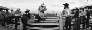 Cowboys at Rodeo, Pecos, Texas, USA