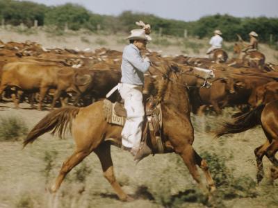 Cowboys on the King Range, TX-Eliot Elisofon-Photographic Print