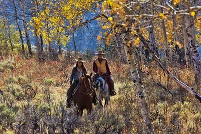 https://imgc.artprintimages.com/img/print/cowgirl-and-cowboy-riding-together_u-l-pzptsx0.jpg?p=0
