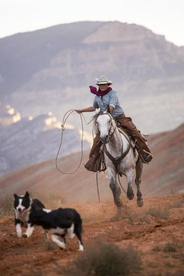 Cowgirl at Full Gallop with Cowdogs Leading Way-Terry Eggers-Photographic Print