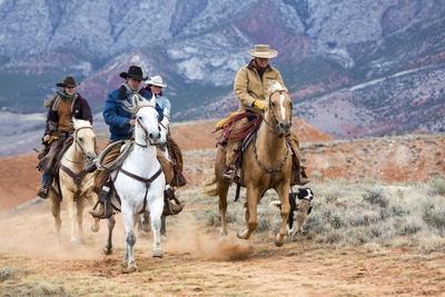 https://imgc.artprintimages.com/img/print/cowgirl-cowboy-at-full-gallop_u-l-pzqqq60.jpg?p=0