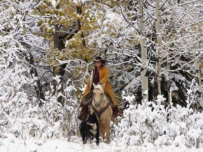 Cowgirl Riding in Autumn Aspens with a Fresh Snowfall-Terry Eggers-Photographic Print