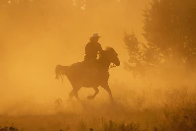 Cowgirl Riding in the Dust-DLILLC-Photographic Print