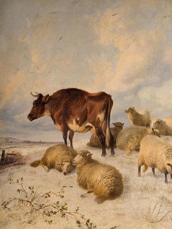 https://imgc.artprintimages.com/img/print/cows-and-sheep-in-snowscape-1864_u-l-plivgp0.jpg?p=0