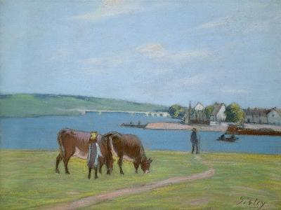Cows on the Banks of the Seine at Saint-Mammes (Pastel)-Alfred Sisley-Giclee Print