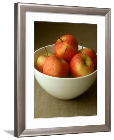 Cox's Orange Pippins-Michael Paul-Framed Photographic Print