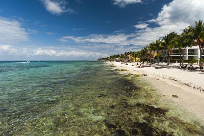 Cozumel Island, Mexico-Sergio Pitamitz-Photographic Print