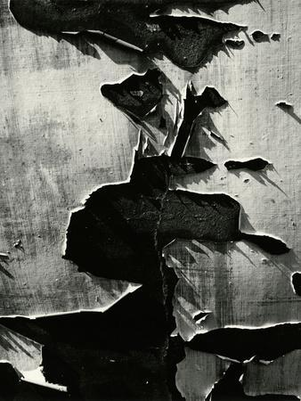 https://imgc.artprintimages.com/img/print/cracked-paint-1970_u-l-q1g6wg80.jpg?p=0