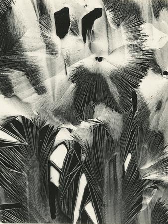https://imgc.artprintimages.com/img/print/cracked-plastic-paint-garrapata-1954_u-l-q1g6lyd0.jpg?p=0