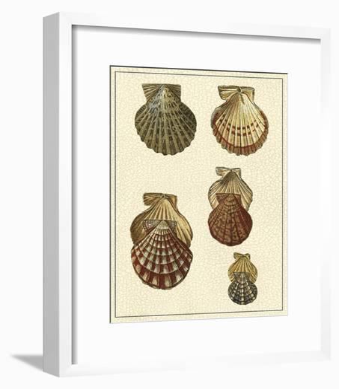 Crackled Antique Shells I-Denis Diderot-Framed Art Print