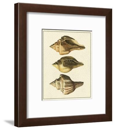 Crackled Antique Shells VI-Denis Diderot-Framed Art Print