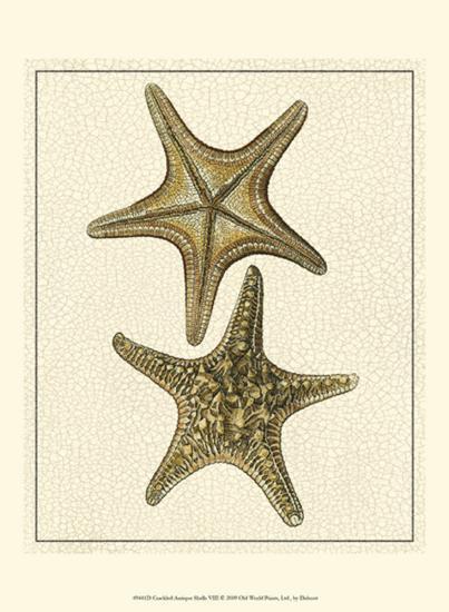 Crackled Antique Shells VIII-Denis Diderot-Art Print