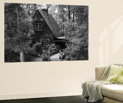 Cradle of Forestry in America, Pisgah National Forest, North Carolina, USA-Adam Jones-Wall Mural