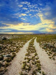 Dirt Road in Grand Canyon National Park by Craig Aurness