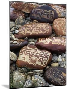 Buddhist Prayers on Carved Mani Stones in Tibet by Craig Lovell