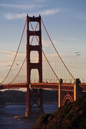 San_Francisco_D260