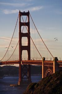 San_Francisco_D260 by Craig Lovell