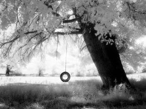 Aiveo by Craig Satterlee