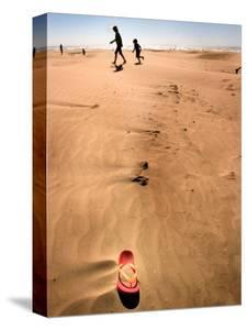 Shoremob by Craig Satterlee