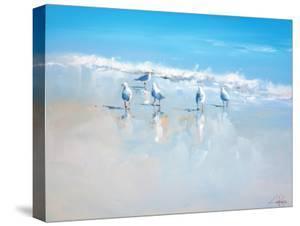 Sorrento Gulls by Craig Trewin Penny