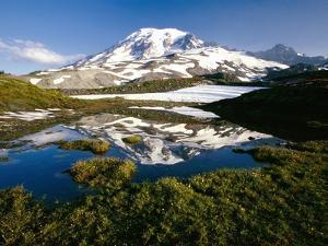 Alpine Lake Reflecting Mt. Rainier by Craig Tuttle