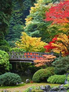 Bridge in Japanese Garden by Craig Tuttle