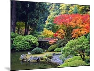 Fall Colors at Portland Japanese Gardens, Portland Oregon by Craig Tuttle