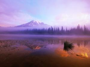 Fog Hanging Over Reflection Lake by Craig Tuttle
