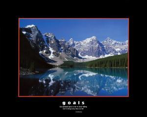 Goals: Dolphins by Craig Tuttle