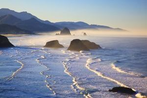 Haystack Rock from Ecola State Park, Oregon Coast by Craig Tuttle