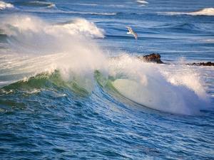Heavy Surf off Cape Kiwanda on Oregon Coast by Craig Tuttle