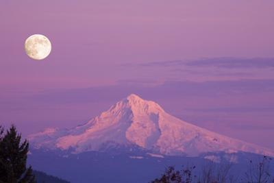 Mount Hood and Full Moon by Craig Tuttle