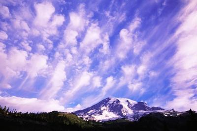 Mount Rainier by Craig Tuttle