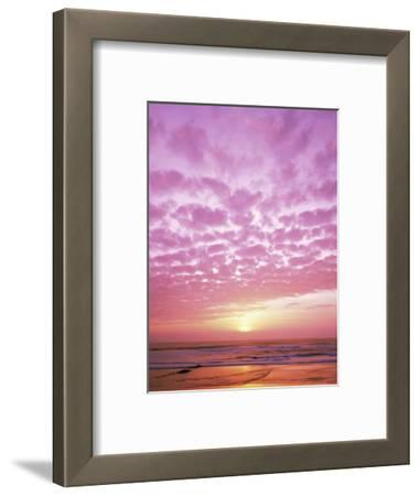 Pink Sunset Over Heceta Beach