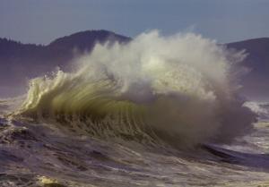 Purpose: Wave by Craig Tuttle