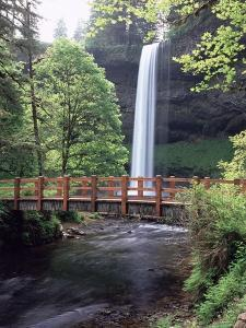 Silver Falls State Park - Oregon by Craig Tuttle