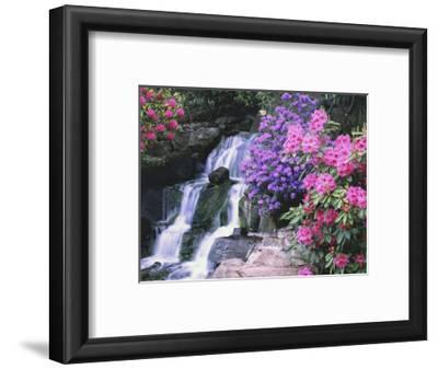 Waterfall in Crystal Springs Garden