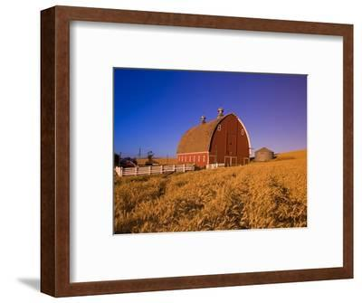 Wheat Field and Barn at Sunrise