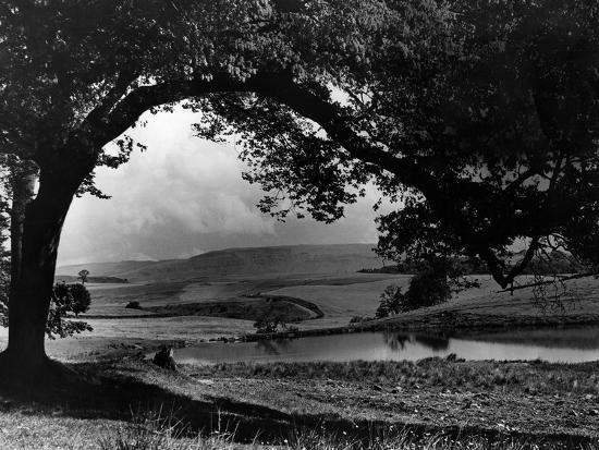Craigallian Loch 1956-Daily Record-Photographic Print