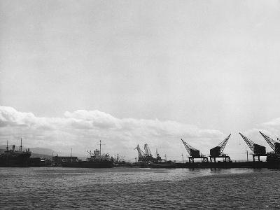 Crane on the Port of Rijeka (River)-Dusan Stanimirovitch-Photographic Print
