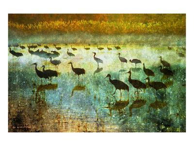 Cranes in Mist I-Chris Vest-Art Print
